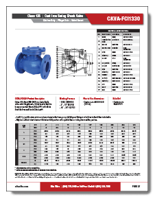 Cast Iron Swing Check Valve Class 125 Elite Valve Brochure