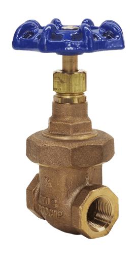 Bronze Gate Valve Class 300 NRS Union Bonnet Elite Valve Image
