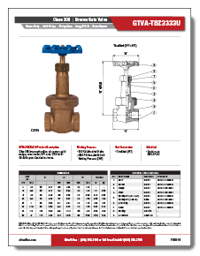 Bronze Gate Valve Class 300 RS Elite Valve Brochure
