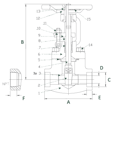 Forged Carbon Steel Gate Valve Class 800 Elite Valve Technical Drawing